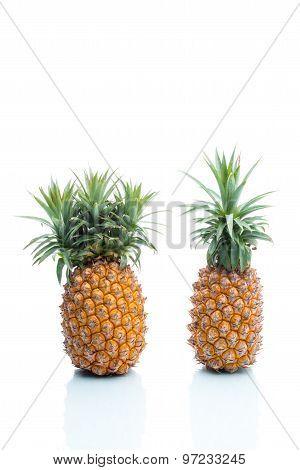 Genetic Modification, Pineapple, Fruit, Modification, Strange, Surreal