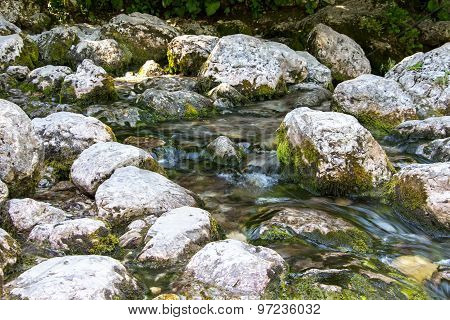 Image of stones with moss in the water