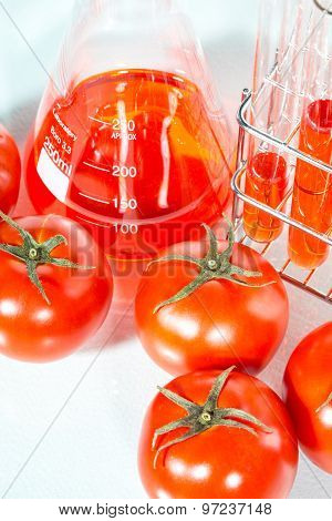 Vegetable Test,  Genetic Modification,  Tomato