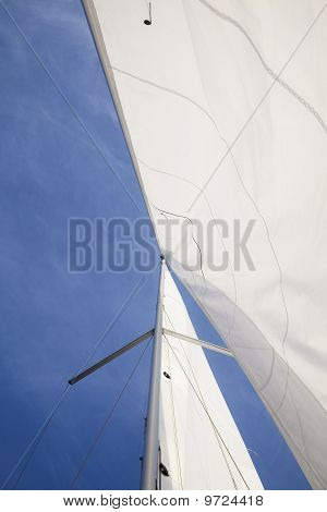 Yacht Canvases
