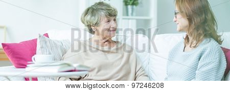 Carer Talking With Pensioner
