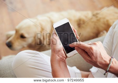 Close Up Of Woman Using Smartphone At Home