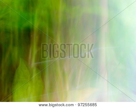 The digital blur Abstract picture. Forest.