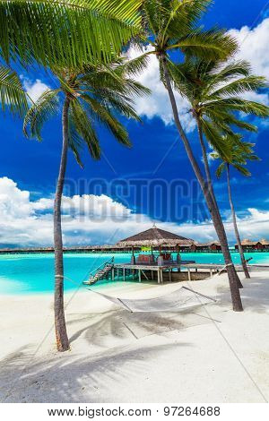 Empty hammock between palm trees on tropical beach with vibrant blue sky