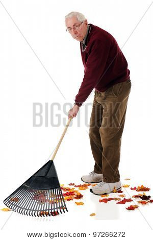 A senior man raking colorful fall leaves.  He has a weary expression.  On a white background.