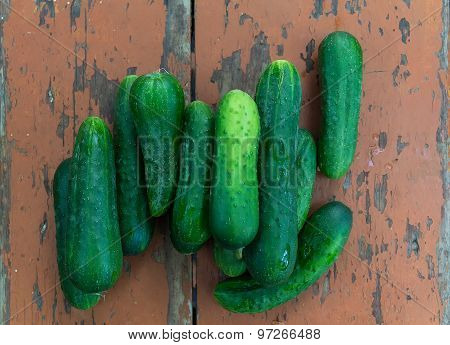 Fresh Cucumbers Dry Surface Vintage Table. Rustic