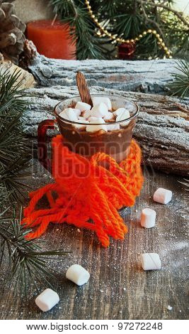 cup of hot chocolate with marshmallows and a scarf