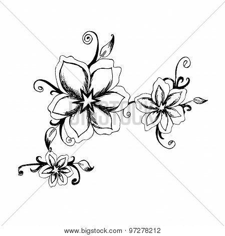 Decorative, flowers, sketch, hand drawing, vector, illustration