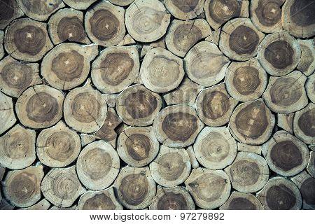 Anual Ring Wood Wall