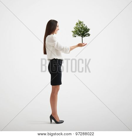 smiley woman holding small tree on her palms. isolated on light grey background