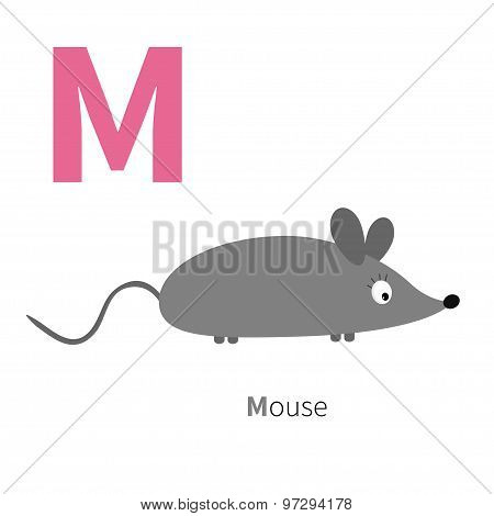 Letter M Mouse Zoo Alphabet. English Abc With Animals Education Cards For Kids Isolated White Backgr
