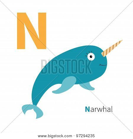 Letter N Narwhal Zoo Alphabet. English Abc With Animals Education Cards For Kids Isolated White Back