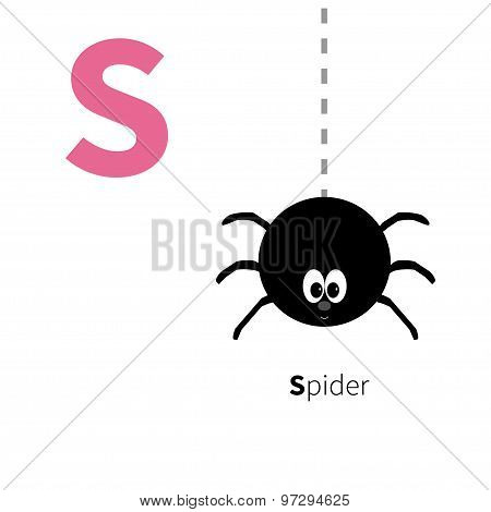 Letter S Spider Zoo Alphabet. English Abc With Animals Education Cards For Kids Isolated White Backg