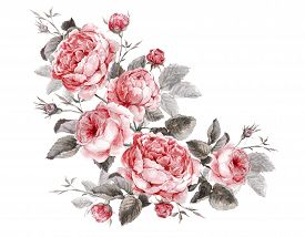 stock photo of english rose  - Classical vintage floral greeting card - JPG