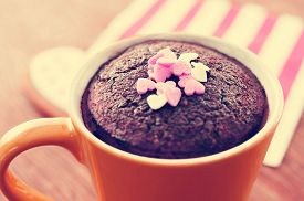 pic of sprinkling  - closeup of a chocolate mug cake topped with heart - JPG
