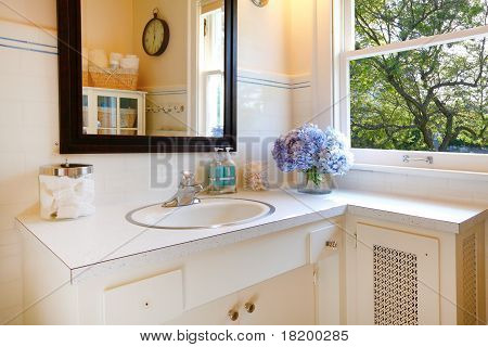 Antique Bathroom With White And Tree Views