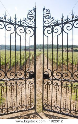 Clos De Vougeot Gate