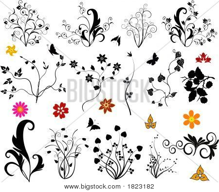 Design Elements,Flowers, Vector Illustration