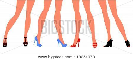 Female Legs In Designer Shoes