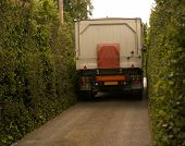 pic of 18 wheeler  - Very large truck in a narrow tree lined lane