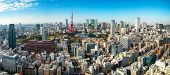 Panoramic View Of Tokyo Tower, Japan poster