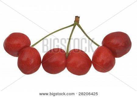 Uncommon Cherries