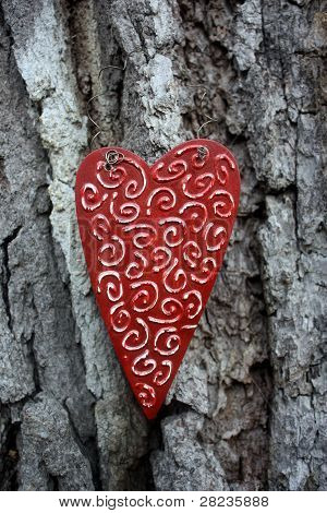 Wood Heart on Tree