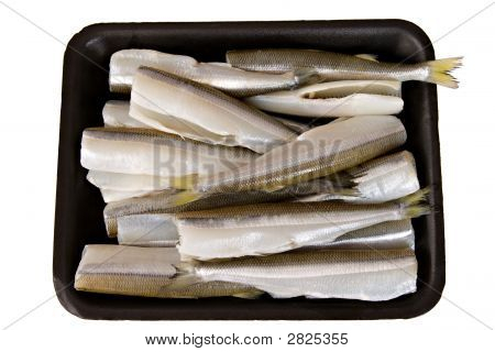 Isolated Headless Smelt Fish