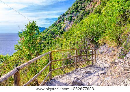 Pedestrian Hiking Stone Path Trail