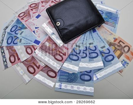 Wallet and Euro notes