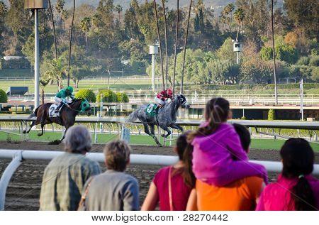 Cavalo de corridas em Santa Anita Park