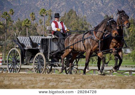Santa Anita Park, cavalo e carruagem