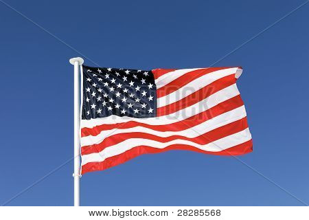 The Usa Banner