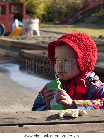 Child enjoying kindergarten lunch outdoors