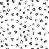 Dog Paw Seamless Pattern Vector Footprint Kitten Puppy Tile Background Repeat Wallpaper Cartoon Isol poster
