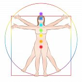 Vitruvian Woman. Female Body With The Seven Main Chakras. Isolated Vector Illustration On White Back poster