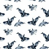 Seamless Pattern With Watercolor Killer Whales, Hand Painted On A White Background poster