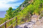 Pedestrian Hiking Stone Path Trail With Railing Between Corniglia And Vernazza Villages With Green T poster