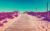 Path Of Wooden Slats Towards The Beach. Vivid Grass And Vegetation. Dreamscape In Coastline Backgrou poster