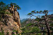 Pine tree and rock cliff at Towangpok Observatory viewpoint, Seoraksan National Park, South Korea poster