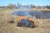 Grass Burning Near Village Houses. Burning Grass Releases More Nitrogen Pollution Than Burning Wood poster