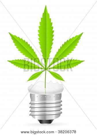 Broken Light Bulb And Marijuana Leaf