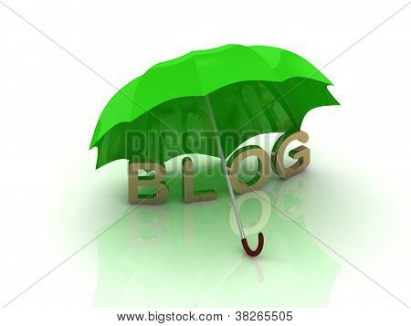 Blog Under The Green Umbrella