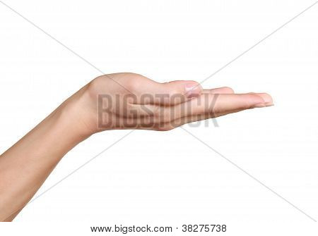 Empty Hand Showing Product Isolated On White Background