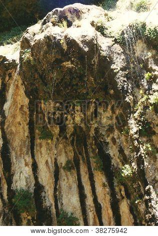 Weeping Rock - Zion N.P., Utah