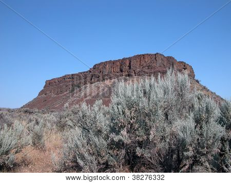 Palisades - Washington Desert