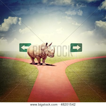 abstract image of steet and huge rhino