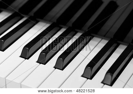 Perfect elegance of music