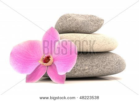 Spa Stones With Orchid. 3D Model Isolated On White Background