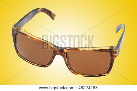 Brown Tortoiseshell Sunglasses